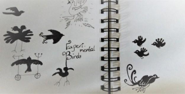 experimental birds